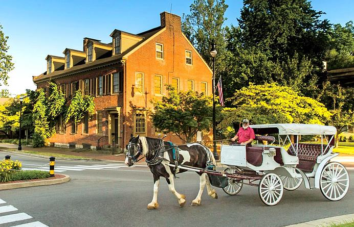 Bardstown Horse and Carriage